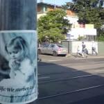 Plakat an der Österreicher Straße